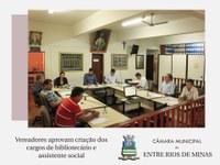 Vereadores aprovam criação do cargo de bibliotecário